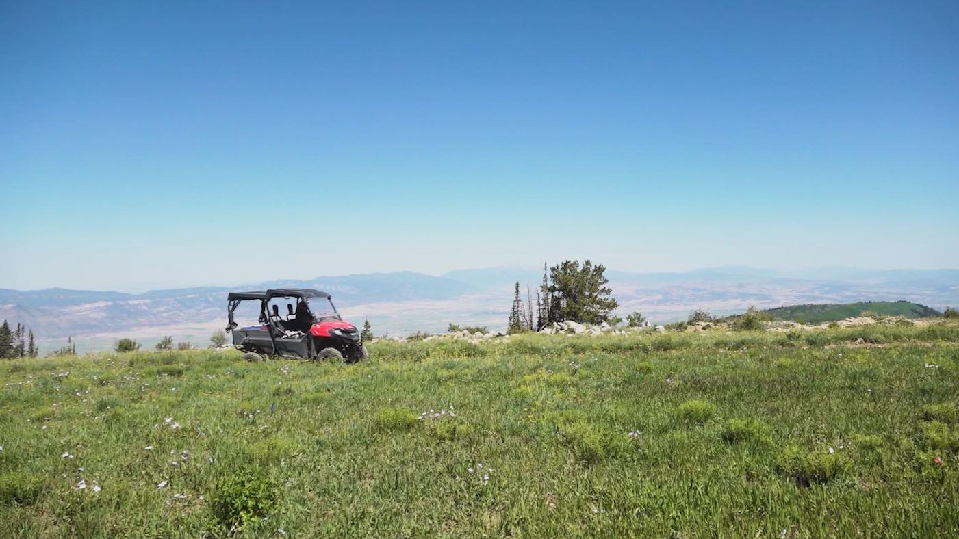 Arapeen Trail 44
