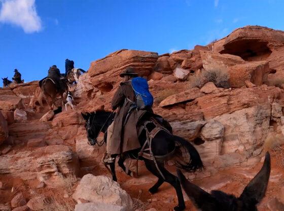 Mule Riding Warner Valley